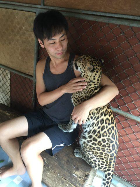 カンチャナブリでヒョウの赤ちゃんと戯れられるサファリパークに行ってきた