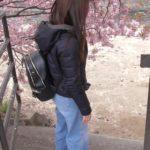 河津桜まつり、どこから河川敷に降りれる?敷物敷いてお花見、食事はOK?